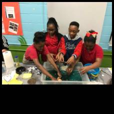 Meadowview Scholars Conducting Experiments at STEM Night!